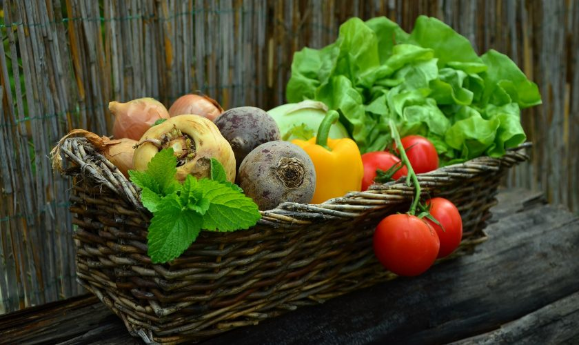 How to Build a Balanced Plant Based Diet – Part One
