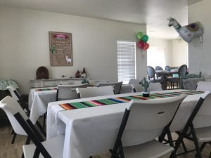 llama birthday party table and chairs